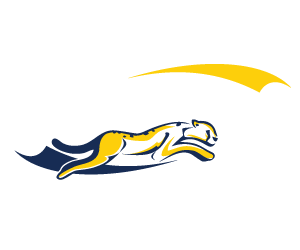 GTS EXPORT